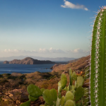 Savor the Costa Rican Landscapes